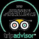 Tripadvisor Excellence